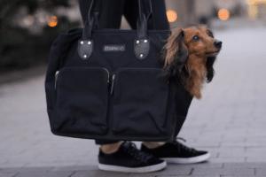 Django-pet-carrier-bag